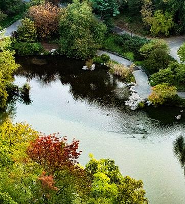 Morning (Central Park).png