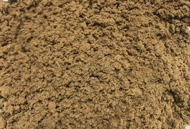 Ganoderma - Polvo a Granel