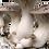 Thumbnail: Engendro de Granos - Ostra Rey