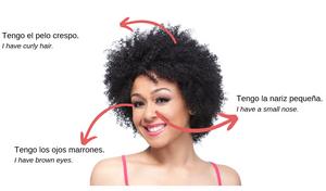 The verb Tener in Spanish