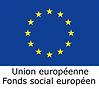 logo FSE BIS.png