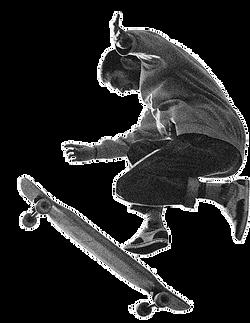 noise-skateboard.png