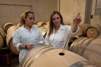 2012_12_11_ESALQ_LAN_Nova_Destilaria_005