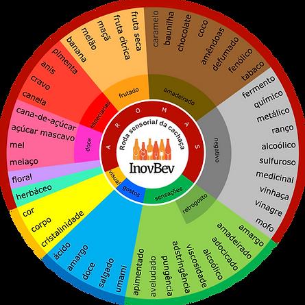 roda sensorial cachaca Inovbev.png