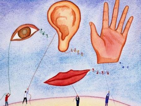 Ver, ouvir ou tocar: Qual seu canal de percepção mais desenvolvido?