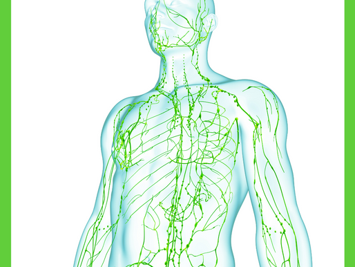 What is the Lymphatic System and how can self treatment help my pain?