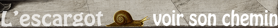 escargot chemin.png