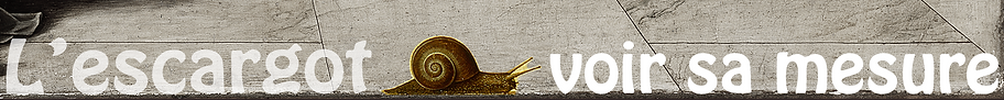 escargot  mesure.png