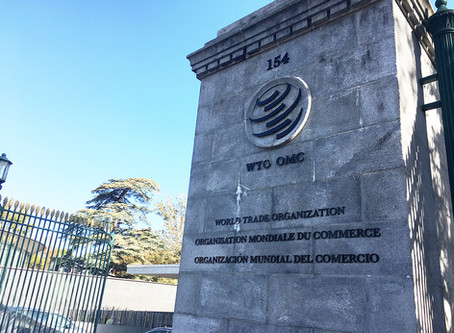 WTO D-G selection, harnessing finance for the SDGs, and the ILO achieves a milestone
