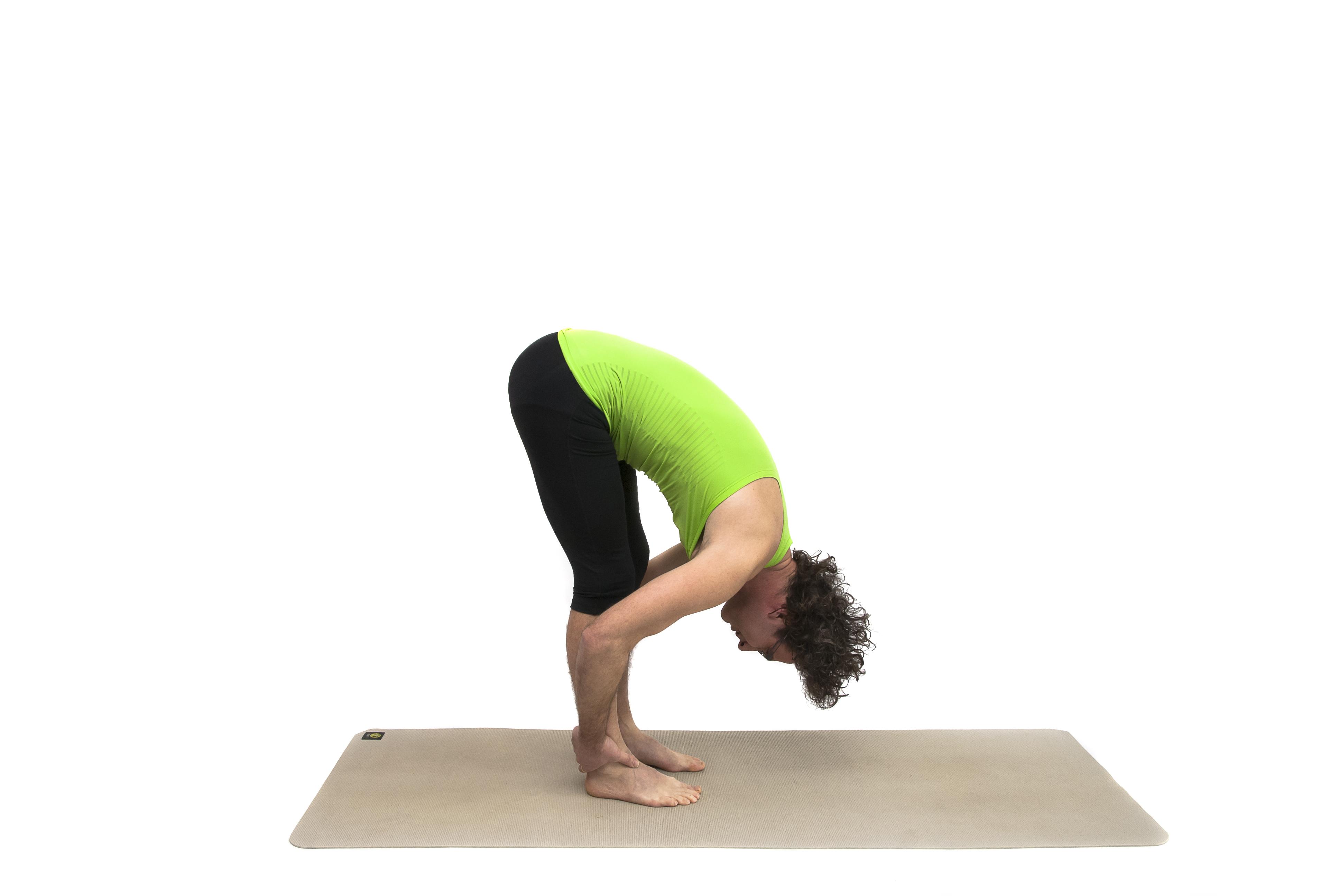 yogi Martijn
