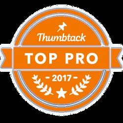 Thumbtack 2017 Top Pro in PC Repair