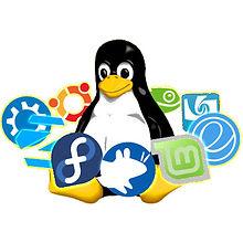 03 Linux OS 500x500.jpg