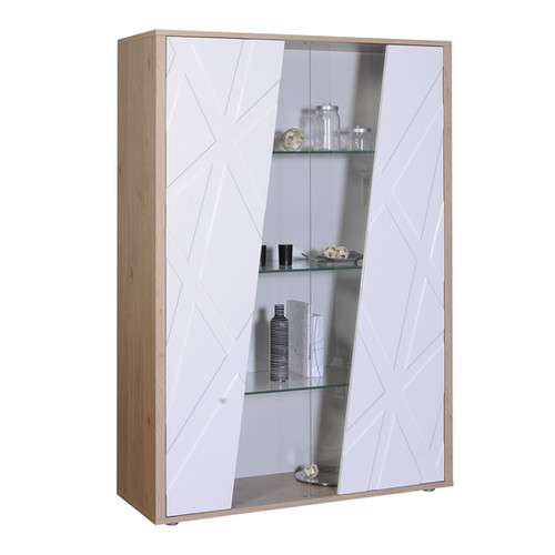 VITRINE 2 PORTES N°40  | 2 DOORS STORAGE UNIT N°40