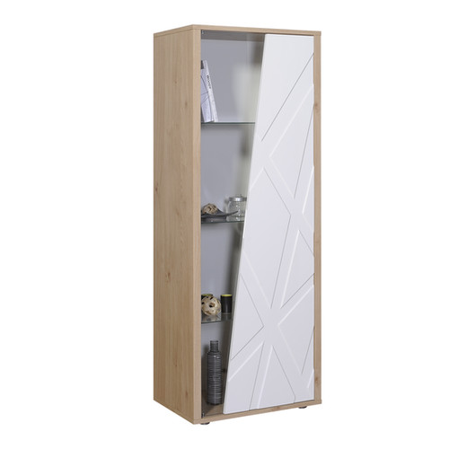 VITRINE 1 PORTE GLACE N°20 | 1 DOOR STORAGE UNIT N°20