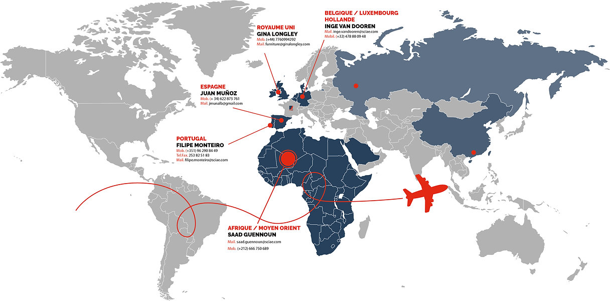 carte monde export.jpg