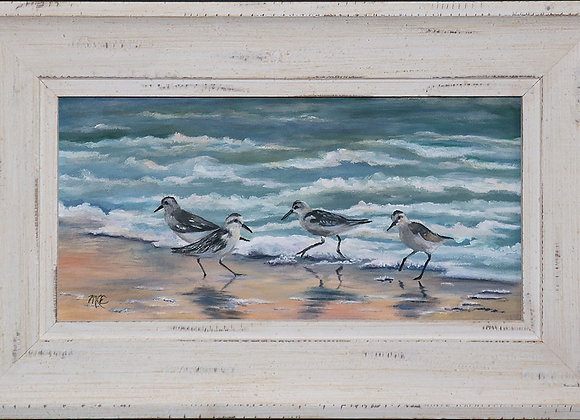 """Sanderlings"" Oil on stretched Canvas - 7"" x 14"" Framed"