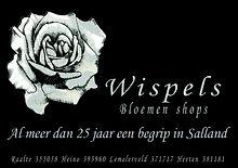 advertentie Wispels (1).jpeg