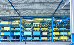 Foam Giant Conveyor & Automated Storage System