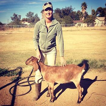Goats Milk Soap Goats Make Soap
