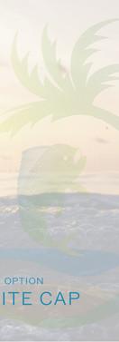 White Cap - Finish Option.jpg