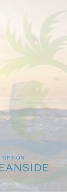 Oceandside - Finish Option.jpg