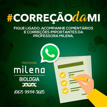 CORRECAO-MI.png