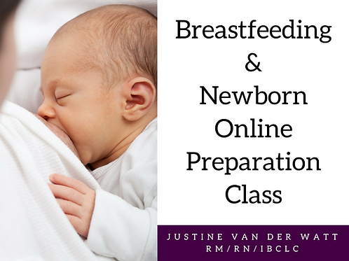 Online Breastfeeding and Newborn Class (3 months access)