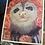 Thumbnail: Two Toed Sloth