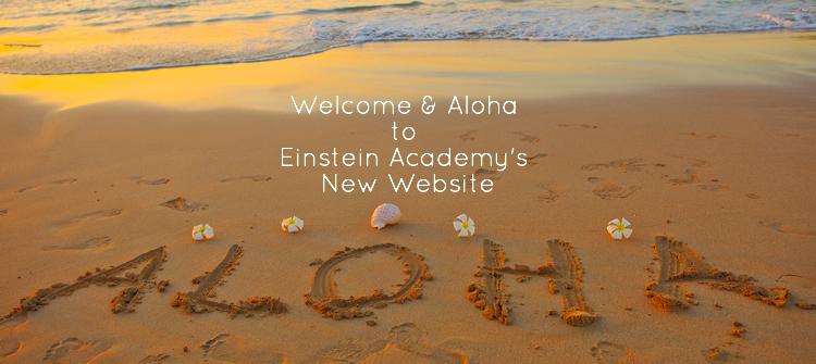 Einstein Academy Re-freshes It's Website