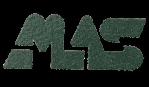 MAS1.png