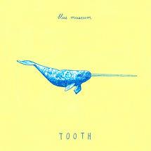 ToothFront.jpeg