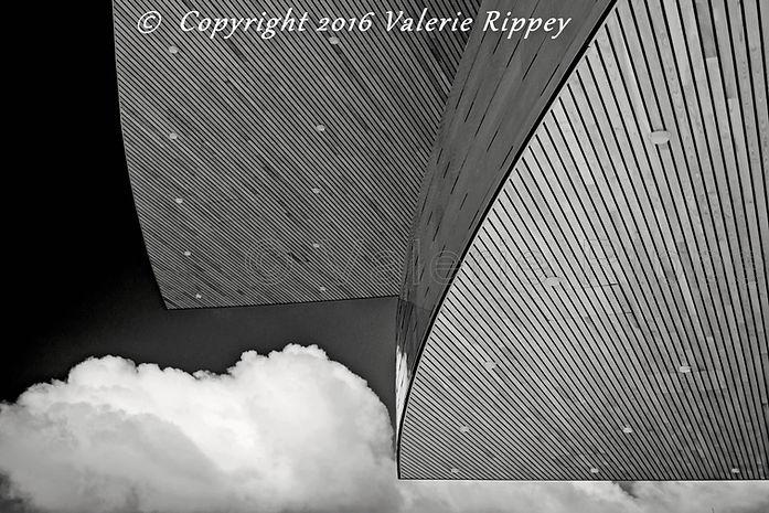 VRippey Between Heaven and Earth.jpg