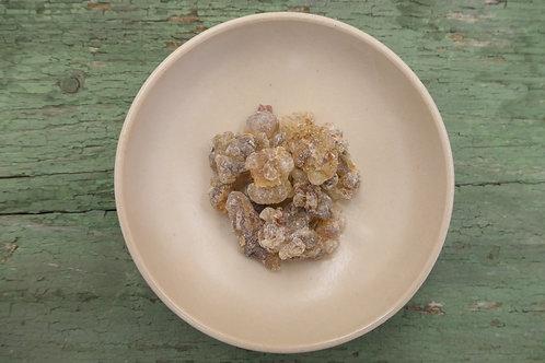 Weihrauch Jemen - Boswellia sacra (GH)