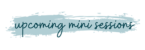 upcoming mini sessions