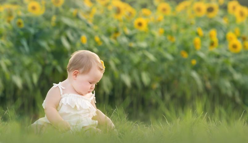2017 Sunflower Brown-1142.jpg