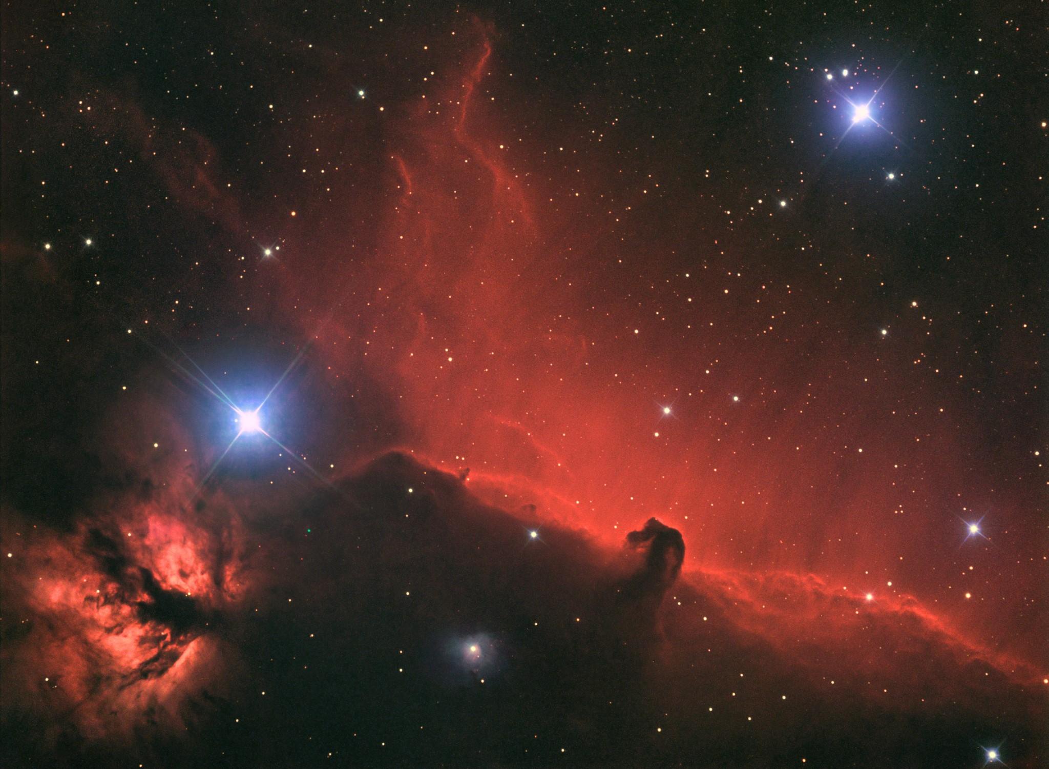 Horsehead Nebula by Andrea Ricciardi