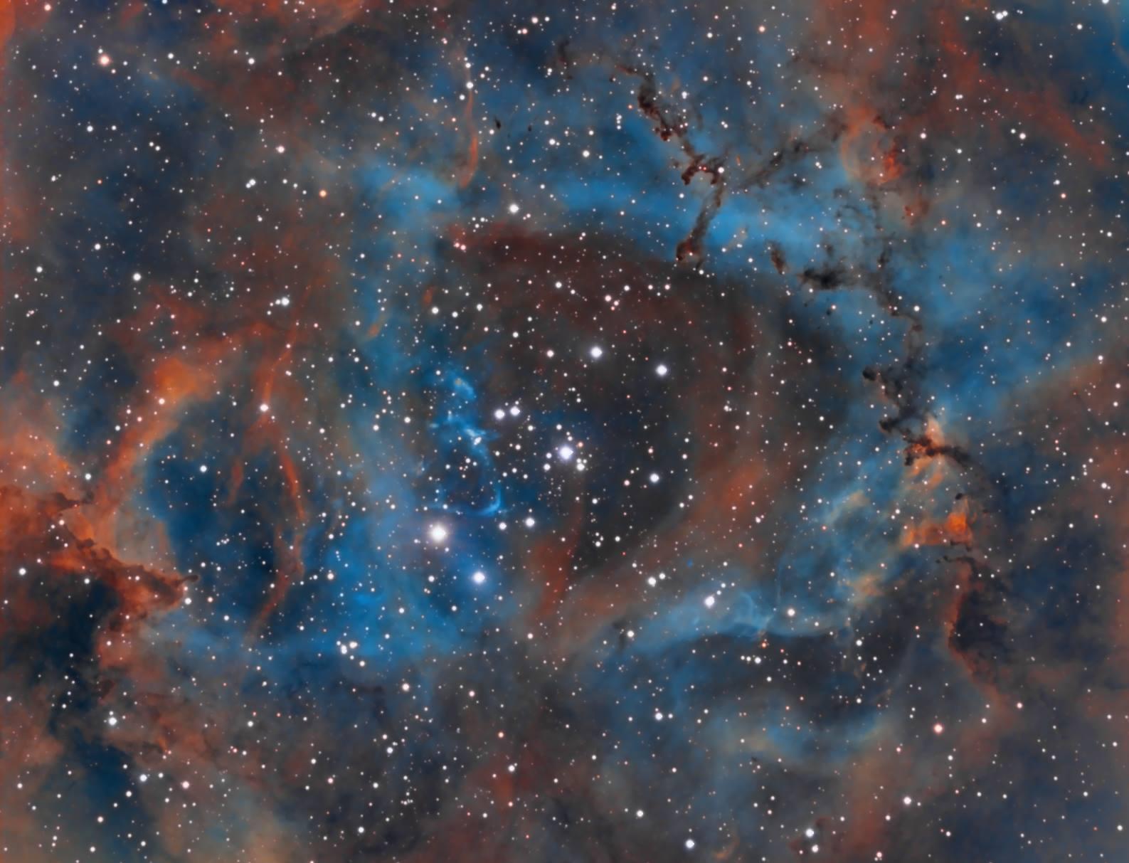 Rosette Nebula by Michele Marini
