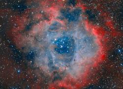 Rosette Nebula by Alessio Pariani