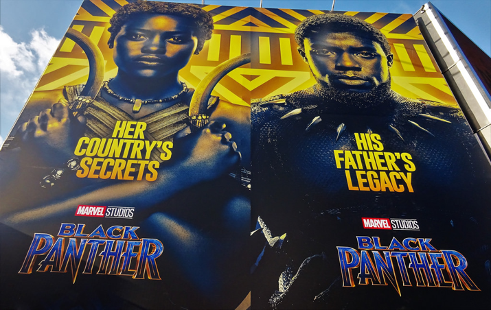 Not your average Marvel hero: Black Panther review