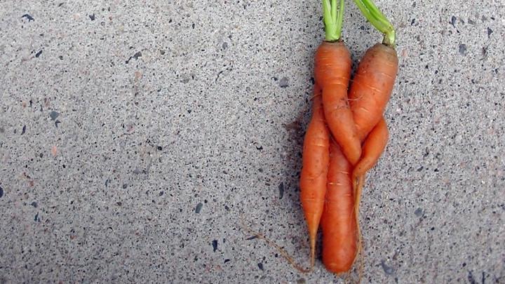 Vegans spurn meat-eaters as sexual partners