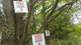 Landmark ruling requires HS2 to give 'sufficient' information for planning applications