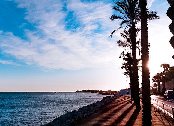 Coucher de soleil sur les palmiers.