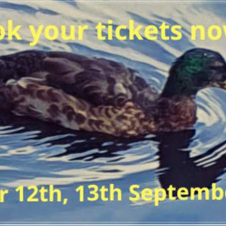 Book tickets now!