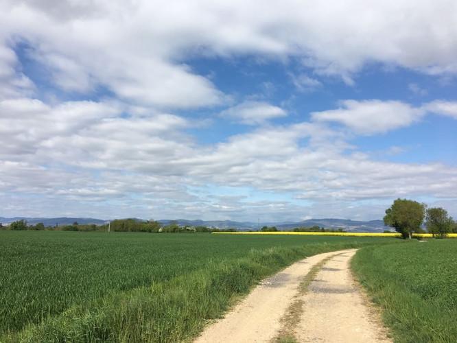 Plateau du Val de Saône