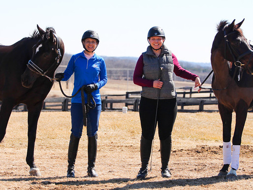 Introductory Dressage Classes