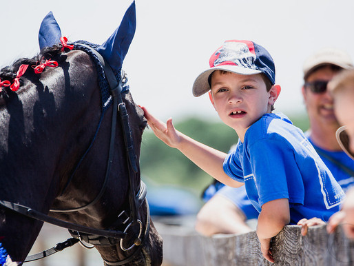 HorsePower Memorial Day Horse Show at Fox Chase Farms