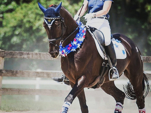 Happy 4th of July from Day Dressage!