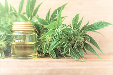 CBD-Oil-Medical-Marijuana_edited.jpg