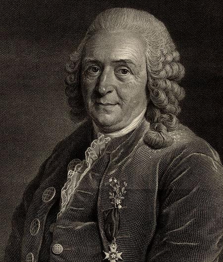 Carl-von-Linne.jpg