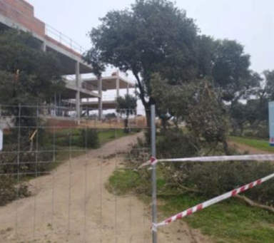 El PSOE denuncia la entrada y ocupación del monte de Boadilla-Los Fresnos con las obras del Highland